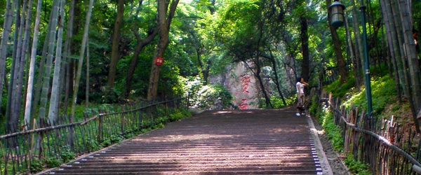 Steps up the hill and through the bamboo forest to the Baochu Pagoda.