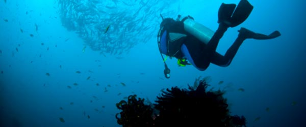 The east coast of Bali is a great place for scuba diving.