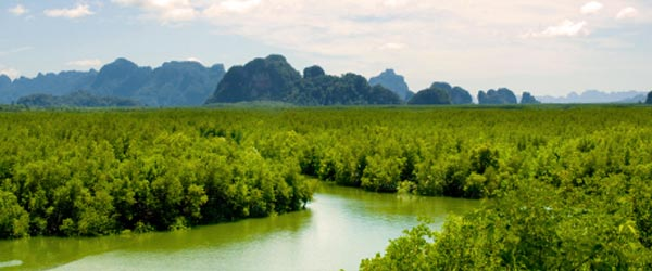 Phang Nga Bay was a filming site of The Man With The Golden Gun.