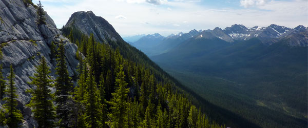 The view from the peak of Sulphur Mountain. Photo credit Andrew Bowden CC BY-SA
