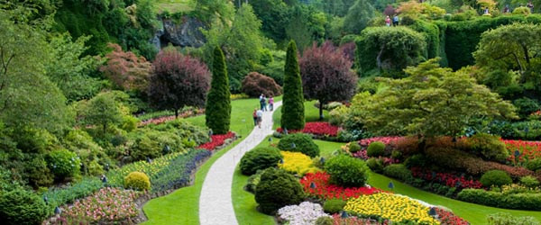The Butchart Gardens are Victoria's most well-known tourist attractions.