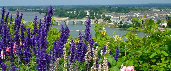 View of the Saumur Valley and colorful flowers.