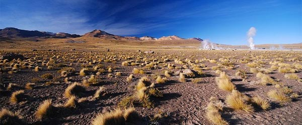 A view of the El Tatio Geyser field in the Atacama Desert.