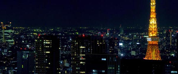 A look at the skyline of Tokyo with the Tokyo Tower on the right.