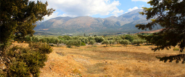 Looking back at Malia from the Minoan Palace. Photo credit Andrew Skudder / CC BY-SA
