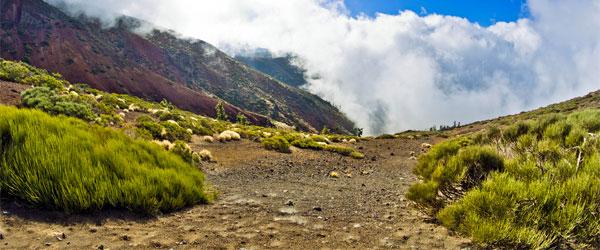 The striking landscape of Tenerife's Teide National Park. Photo credit Björn Freiberg