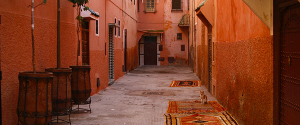 Small lanes like this are the only streets in the walled medina of Marrakech.
