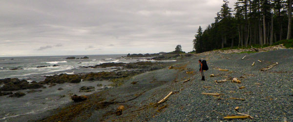 A solitary hiker standing on the northern coast of Vancouver Island. Photo credit Jordan Mounteer.
