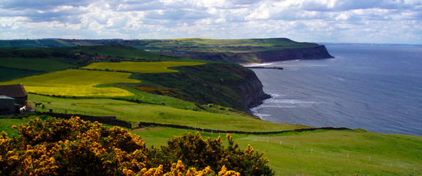 Sweeping views of the coastline in the North York Moors National Park.