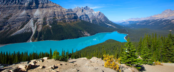 Peyto Lake in the Banff National Park is one of Canada's most instantly recognizable scenes.