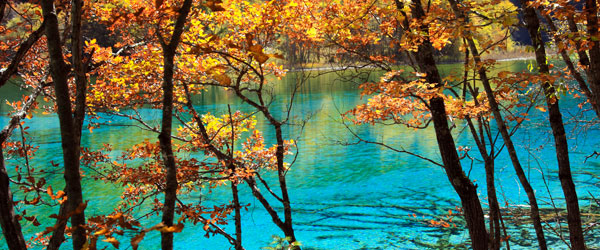 The impossibly blue waters of the lakes and the vibrant fall foliage are some of the main draws to the Jiuzhaigou Valley.