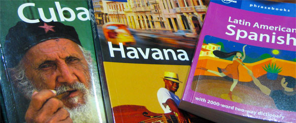A collection of the travel guidebooks for which Lonely Planet is known.