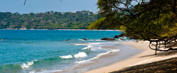 The Manuel Antonio National Park is a hot spot for sea turtles in Costa Rica.