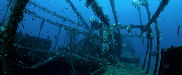 A diver exploring a sunken World War II-era shipwreck off the coast of Busuanga.