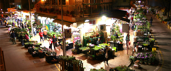 The Flower Market opens early and closes late. Photo credit Cyril Massenet.