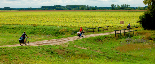 Cycling in Hungary on the way to Budapest. Photo credit Mario Vercellotti CC BY-SA.
