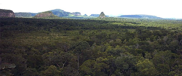 A look at the very, very remote Cerro Cora National Park in Paraguay. Photo by Bolívar R. Garcete-Barrett/Wikimedia.