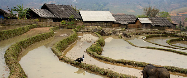 Sapa lies in Vietnam's Northern Highlands. Photo by aporisme/Flickr.