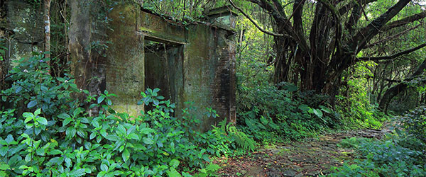 An abandoned building on the hiking trails near Pat Sin Leng. Photo by EugeneLimPhotography.com/Flickr.