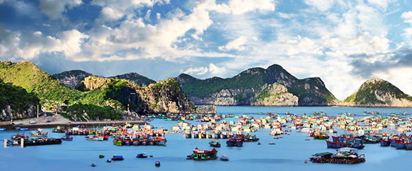 Cat Ba Island is one of Vietnam's up-and-coming destinations.